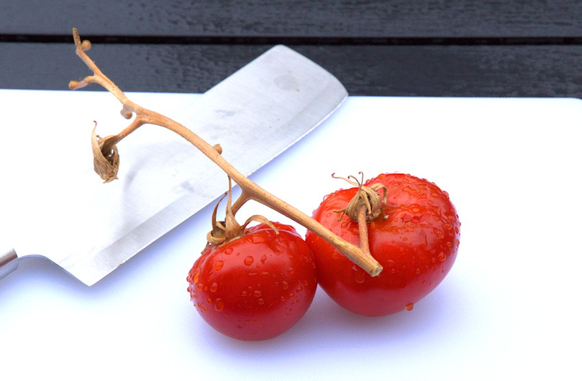 Rote Tomaten selbst ziehen und pflanzen
