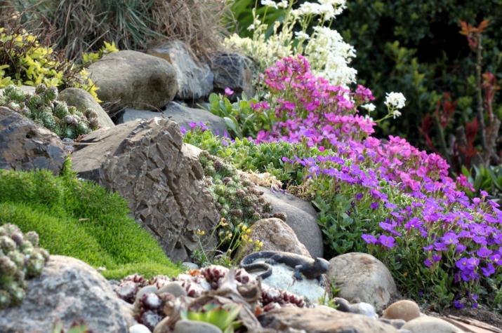 Wie man einen Steingarten anlegt › Das Gartenmagazin