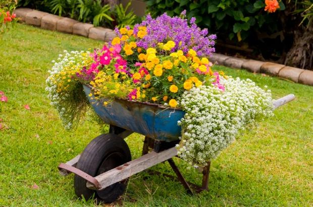 Schubkarre mit Blumen