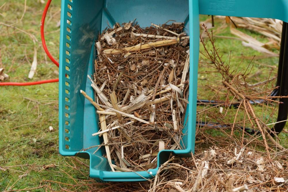 Bambusssträucher - Häckselgut