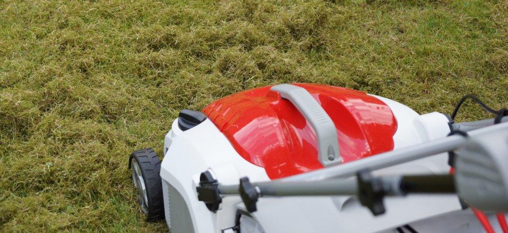 Moos und Vertikutierer auf dem Rasen